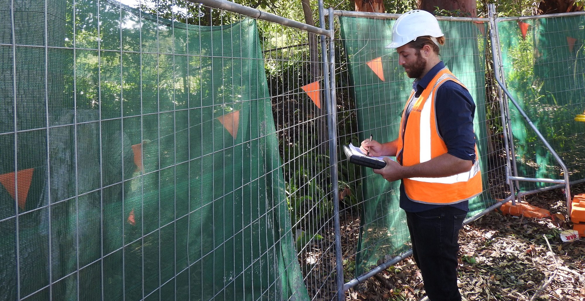 Why Engage a Qualified Level 5 Arborist
